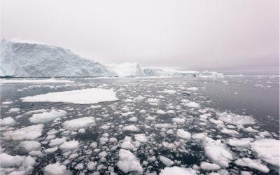 Una speranza per l'Artico? È in virus e batteri